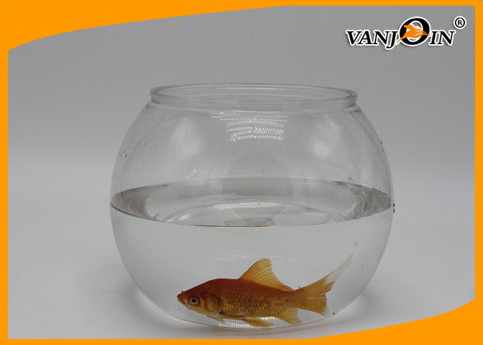 Transparent Pet Plastic Fish Tank Clear Pmma Aquariums